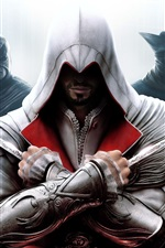 Preview iPhone wallpaper Assassin Creed: Brotherhood