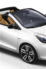 Renault Wind 2010 White