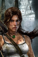 Preview iPhone wallpaper 2011 Tomb Raider 9