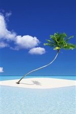 Preview iPhone wallpaper A coconut tree island