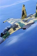 위장의 전투기 비행