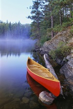 Preview iPhone wallpaper Canoe on Pinetree Lake