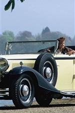 Maybach 레드 DS8 4 - 도어 쿠페형 자동차 1930