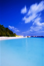 Preview iPhone wallpaper Neotropical summer beach