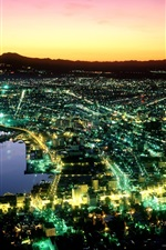 Preview iPhone wallpaper Night of Hakodate in Japan