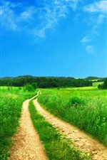 Preview iPhone wallpaper Path on the grass