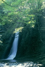 Preview iPhone wallpaper Waterfall in Japan
