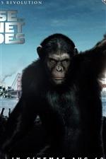 2011 원숭이의 행성의 상승