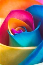 Preview iPhone wallpaper Colorful rose petals
