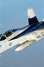 iPhone обои FA-18 Hornet VFA-41 Истребитель