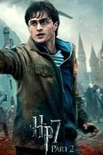 미리보기 iPhone 배경 화면 HP7 2 부 전투의 영웅