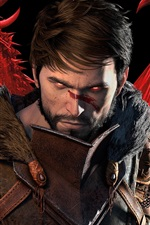 Preview iPhone wallpaper Dragon Age 2