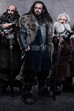 Preview iPhone wallpaper The Hobbit: An Unexpected Journey HD