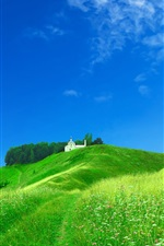 Preview iPhone wallpaper Dream home on the green hillside