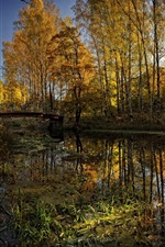 Preview iPhone wallpaper Park river bridge nature beauty