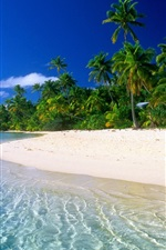아름다운 꿈의 해변