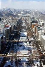 Preview iPhone wallpaper Japanese city after snow