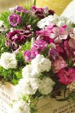 꽃 상자에 핑크색과 흰색 꽃
