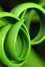 Preview iPhone wallpaper Spiral of green grass close-up