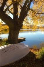 호수의 아름다운 가을