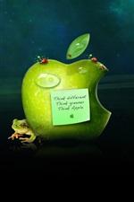 다른 생각, 푸른 생각, 애플 생각