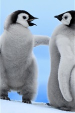 Preview iPhone wallpaper Two little penguins winter snow