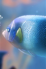 Preview iPhone wallpaper Blue aquarium fish