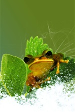 Preview iPhone wallpaper Creative design frog and water