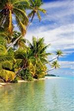 Preview iPhone wallpaper Tropical beach