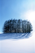 Preview iPhone wallpaper Winter's Snow