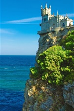 Preview iPhone wallpaper Castle on the sea cliff