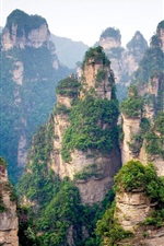 Preview iPhone wallpaper Chinese mountain cliff top forest trees