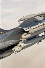 Preview iPhone wallpaper Fighter missiles