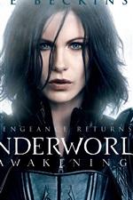 Vorschau des iPhone Hintergrundbilder Kate Beckinsale in Underworld: Awakening