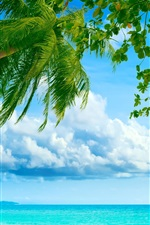 Preview iPhone wallpaper Ocean palm paradise