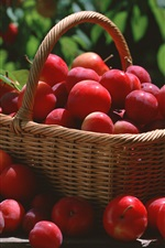 Preview iPhone wallpaper A basket of red plums
