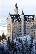 Preview iPhone wallpaper Bavaria castle winter snow