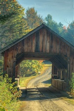 Ponte em estradas florestais