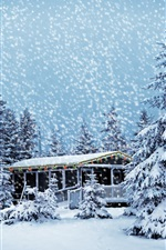 Preview iPhone wallpaper House in the winter forest