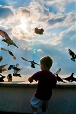 Preview iPhone wallpaper Little boy with pigeons