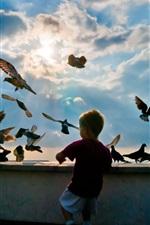 Garotinho com pombos