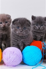 Preview iPhone wallpaper Cute kittens with ball of yarn