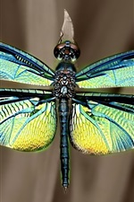 Preview iPhone wallpaper Iridescent dragonfly wings