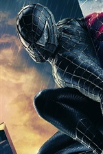 Preview iPhone wallpaper Two Spider-Man