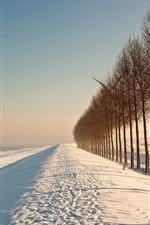 Preview iPhone wallpaper Winter field trees