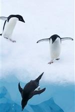 Penguins água de neve gelo