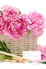 Preview iPhone wallpaper Peonies flower basket pencil crayons