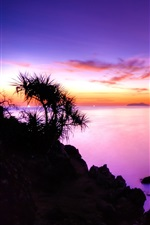 Preview iPhone wallpaper The purple sunset of the coast