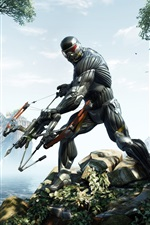 Preview iPhone wallpaper 2013 Crysis 3