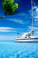 Preview iPhone wallpaper Boat, sea water, palm tree, hot summer sky